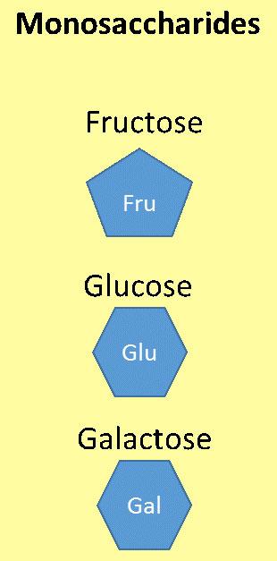 น้ำตาลโมเลกุลเดี่ยว (monosaccharides)