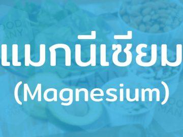 แมกนีเซียม (Magnesium) แร่ธาตุจำเป็น เสริมสร้างระบบภูมิคุ้มกัน ช่วยรักษาสมดุลของร่างกาย