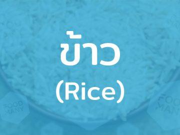 ข้าว (Rice) อาหารหลักคนไทย ธัญพืชสำคัญด้านโภชนาการ แหล่งพลังงานของมนุษย์